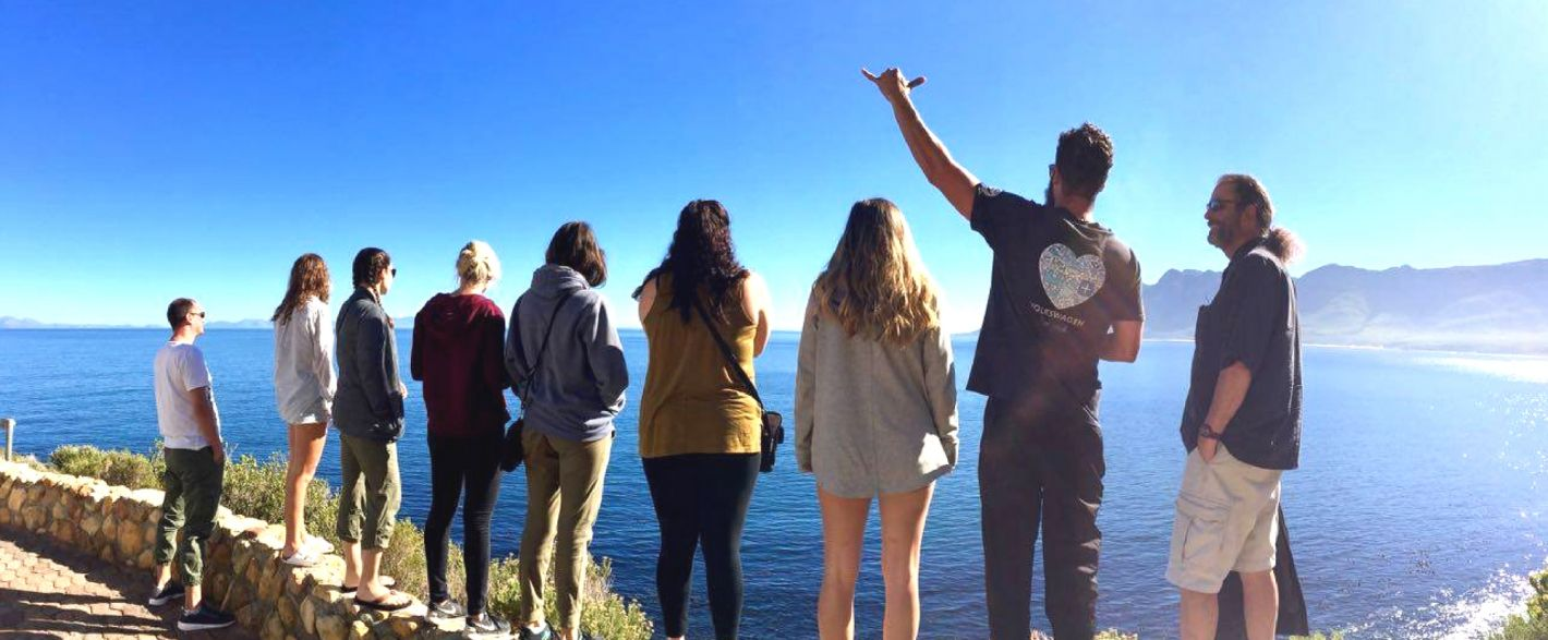 Gapyear and marine volunteering in South Africa with sharks, whales, penguins